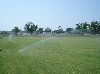Wattering the Field